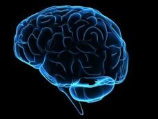 Petice za zákaz dálkového ovládání mozku