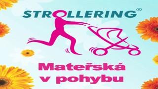 Edita Berková, Strollering – mateřská v pohybu.