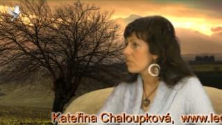 Kateřina Chaloupková, Vyklad Karet