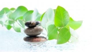 ALTERNATIVNÍ MEDICÍNA MIMO ZÁKON? VRACÍME SE ZPĚT DO TOTALITY?