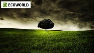 Hemelík Ctirad, Esoterika, Biostyl, Ecoworld a Evolution