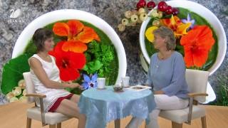 Hana Zapletalová, Při živé stravě hravě a zdravě – povídání s Hankou Zapletalovou