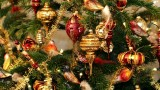 Pět možností, jak oslavit Vánoce bez ubližování zvířatům