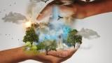 ČR má mít víc území pro divokou přírodu. Vláda právě schválila strategii země do roku 2030, aktuální dění však jde opačným směrem