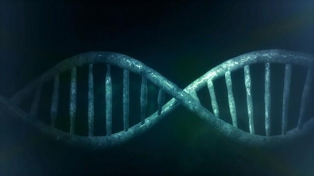 VÝZKUMY DNA POTVRZUJÍ EXISTENCI ATANTIDY
