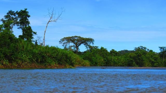DOBROVOLNÍKEM V AMAZONII