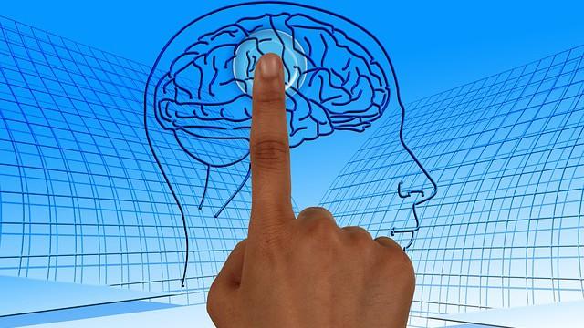 Takto chce Musk hacknúť ľudský mozog. Dosiahol už prvé pokroky