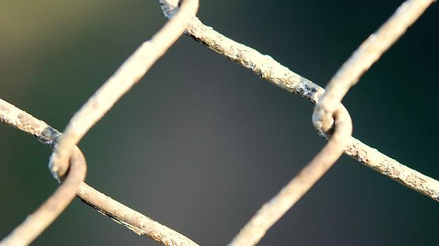 PODPOŘ KONEC DOBY KLECOVÉ, NENÍ-LI TI LHOSTEJNÝ OSUD ZVÍŘAT