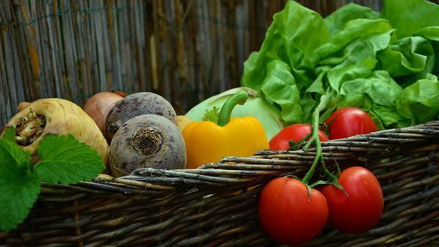 """Zdravé a ekologické zahrady koncentračního typu pro """"labužníky vEvropě''!!!"""