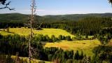 Co skutečně přinesou nová pravidla pro národní parky? Sněmovna o nich má hlasovat 4. dubna. Novela je kompromisem, který znamená pozitivní změnu