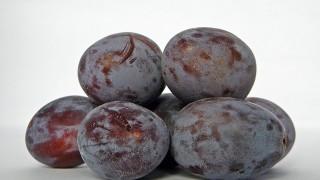 BOMBA NA ŘÍDNOUCÍ KOSTI:  Naservírujte si sušené švestky každý den