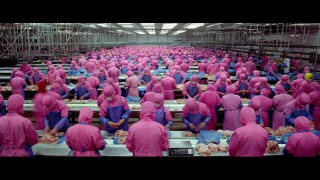 Výroba masa v praxi. 6 minutové video, které vám navždy otevře oči