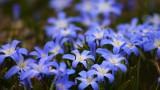 Velikonoční speciál – vedení a zamyšlení pro jednotlivá znamení