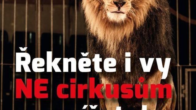 PRAHA 24. 9. – protest před cirkusem Bernes