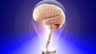 Lidské procesory vašeho mozku