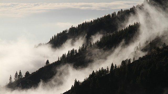 Ekonomice se daří, znečištění přitom neroste. Zato lesy churaví a dál plýtváme energií i odpady. V pondělí vláda projedná Zprávu o životním prostředí ČR