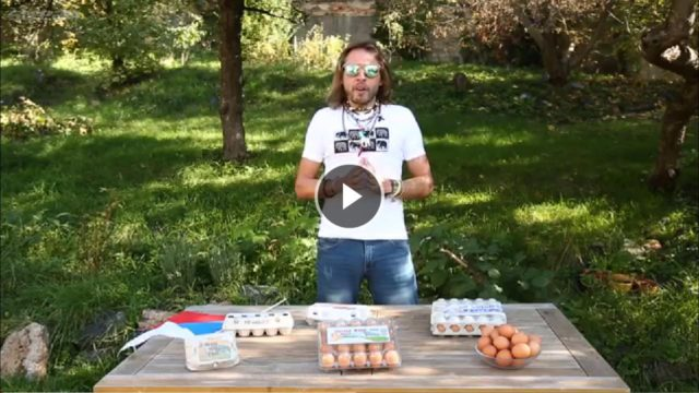Jak polské slepice snáší česká vajíčka