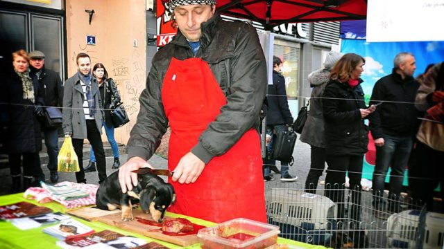 Prodej vánočních psů – Praha, 10. 12. 2016