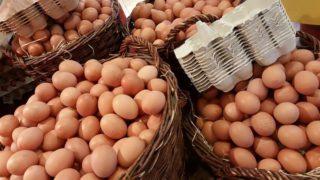 Nečerstvá a dobarvovaná vejce v našich obchodech