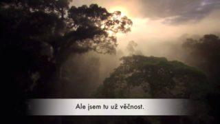 MATKA PŘÍRODA – Julia Roberts mluví za přírodu…