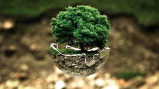 Online festival ekologických filmů