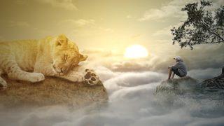 VSTUP DO ROVIN BOŽÍHO LIDSTVÍ…